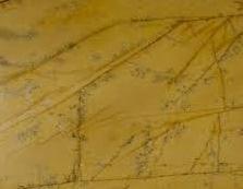 Amarillo Triana